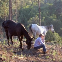 Natural horses share companionship with woman